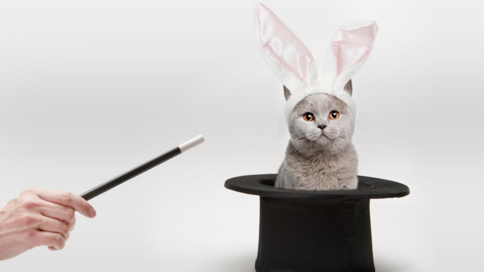 [Gato por Lebre: BB tenta disfarçar pacote com várias reestruturações]
