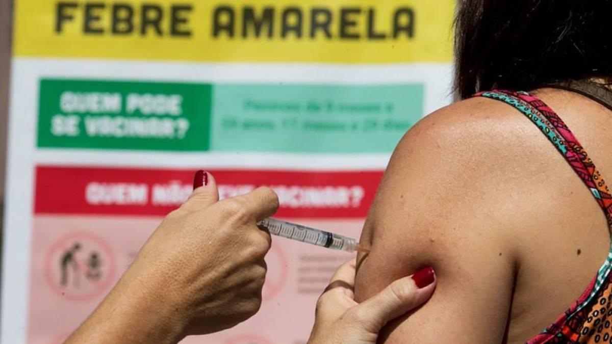 Saiba quem não pode tomar a vacina da febre amarela
