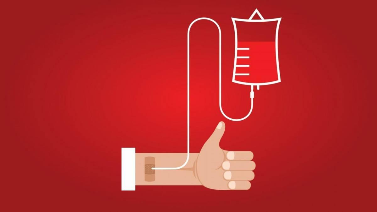 Atenção: Doação de Sangue em Santos