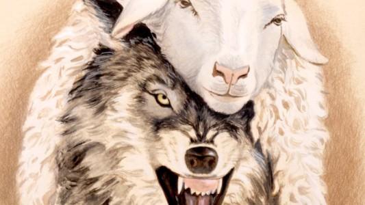 Conar e Procon entram com ações contra campanhas do Santander