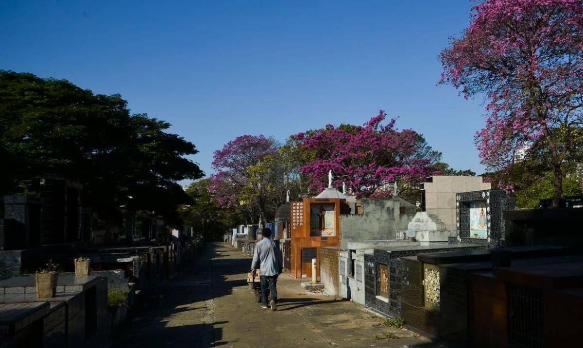Covid-19: Brasil tem 1.841 mortes num dia e ultrapassa 200 mil vítimas