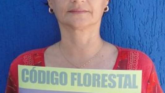 Veta, Dilma: Ambientalistas fazem vigília contra novo Código Florestal