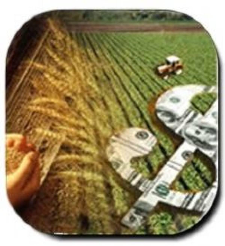 Inflação é culpa da especulação do agronegócio