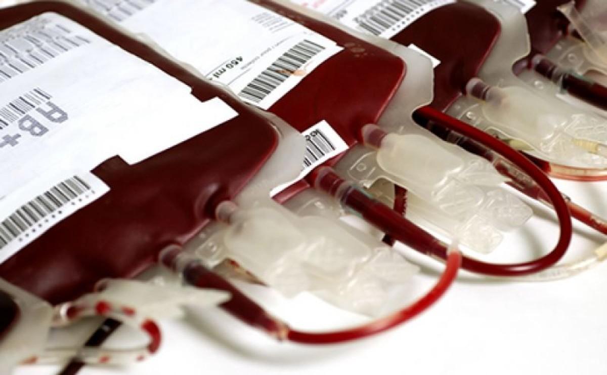 Bancários do BB incentivam doação de sangue na Campanha Salarial