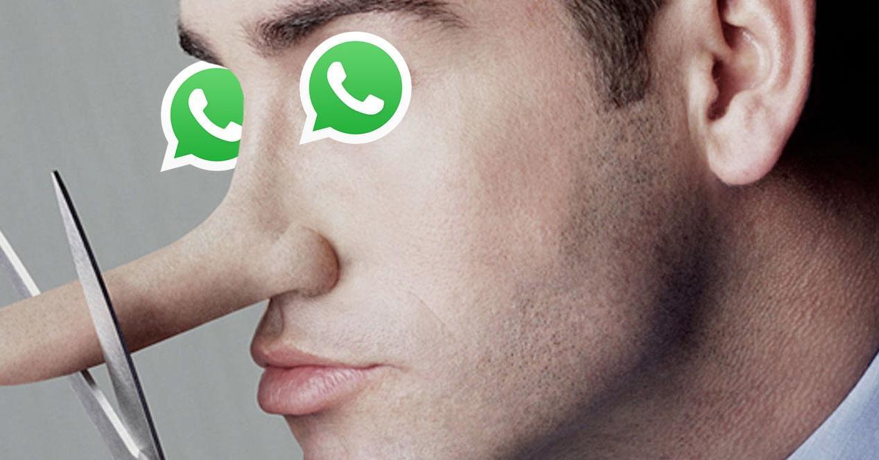 WhatsApp explica como denunciar emissores de notícias falsas