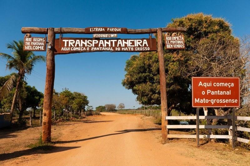 Crime: Transpantaneira vira cinzas depois das queimadas